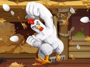 العاب الدجاج الغاضبة