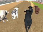العاب سباق الثيران